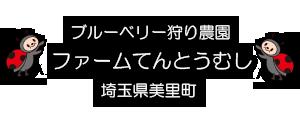 ブルーベリー狩り埼玉県美里町  ファームてんとうむし
